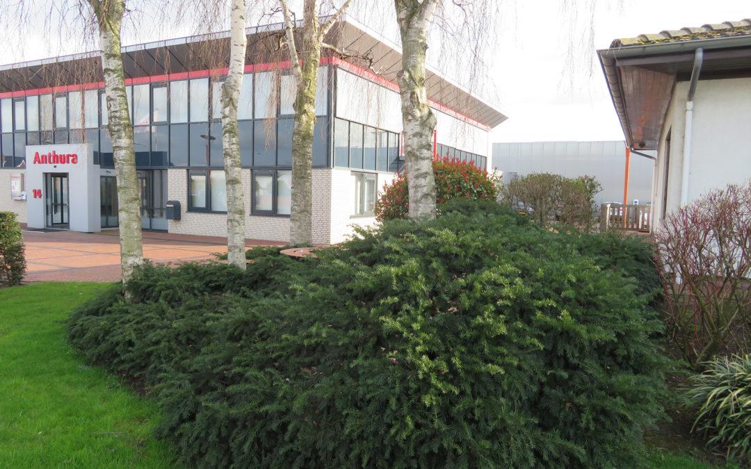 Schetsontwerp entreegebied Anthura, Bleiswijk